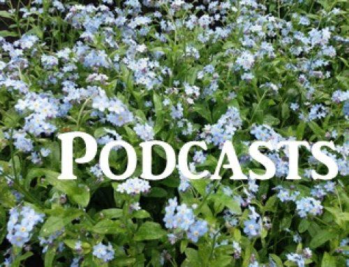 Aktuelle Podcasts, hier online hören: